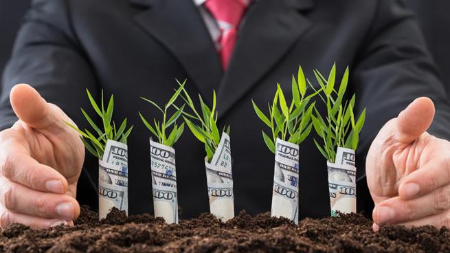 24 negocios rentables y de poca inversión